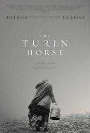 el caballo de turin